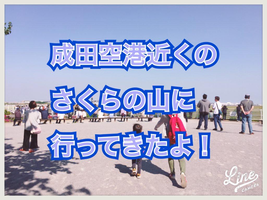 【日記】成田空港ちかくのさくらの山に飛行機を見に行ってきたよ!