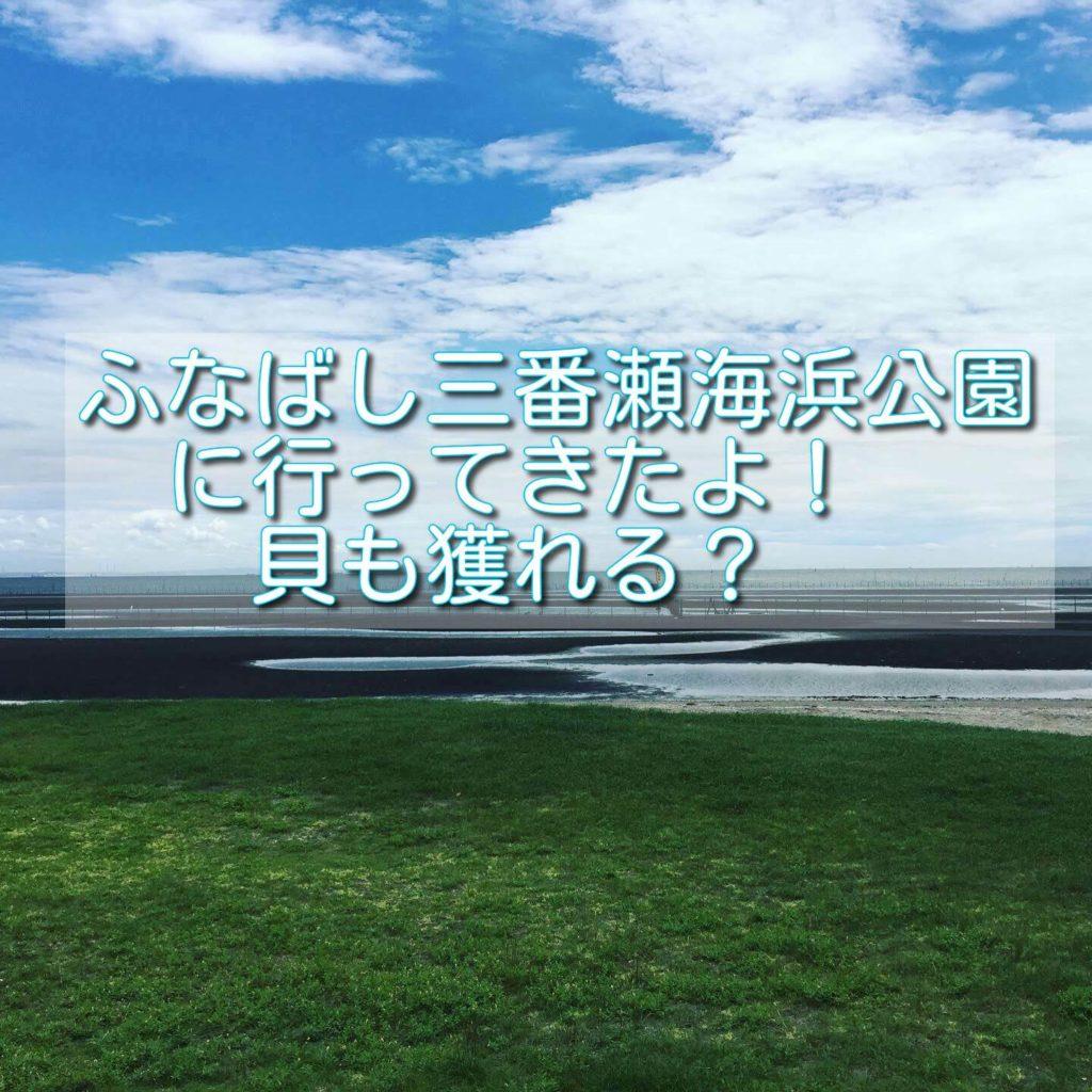 【日記】ふなばし三番瀬海浜公園に行ってきたよ!貝も獲れる?