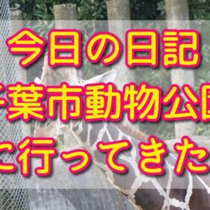 【転職149】本日やった事と感想+千葉市動物公園に行ってきた!