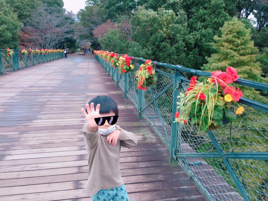 【転職130】本日やった事と感想+アンデルセン公園でゾゾゾごっこ