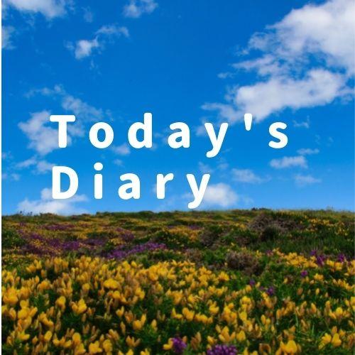 【新・日記101】本日やった事と感想+示唆的なたのしい川べで学ぶ