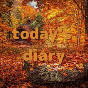 【新・日記147】本日やった事と感想+梨木香歩さん『西の魔女が死んだ』読了